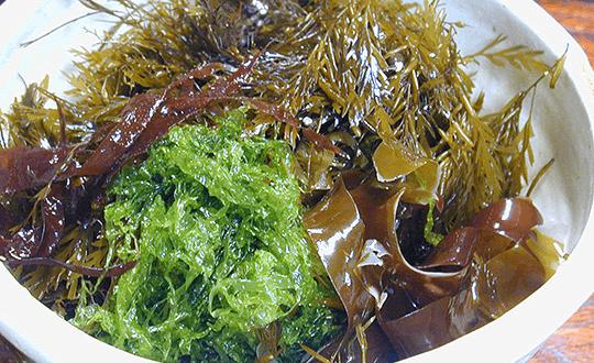 海藻類やネバネバ食材は高血糖を抑制するのに最適!